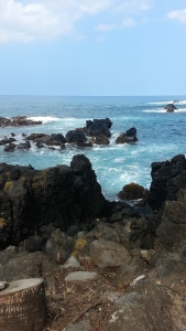 The north part of Maui is the site of one of the most devastating tsunami's that hit following a 7.4 earthquake  off the Aleutian Islands of Alaska