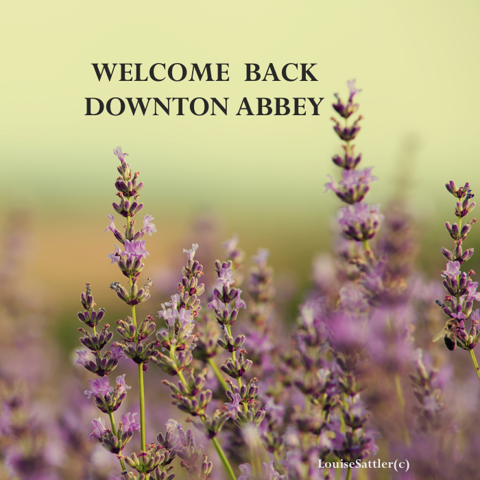Fun Trivia about DowntonAbbey!